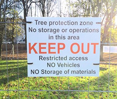 Navigating the Path Around Tree Protection Rules.